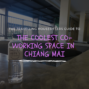 The Coolest New Co Working Space in Chiang Mai (Rooftop Bar Included)