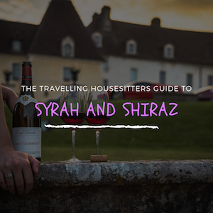Syrah Vs Shiraz: When Is It Appropriate To Say What?