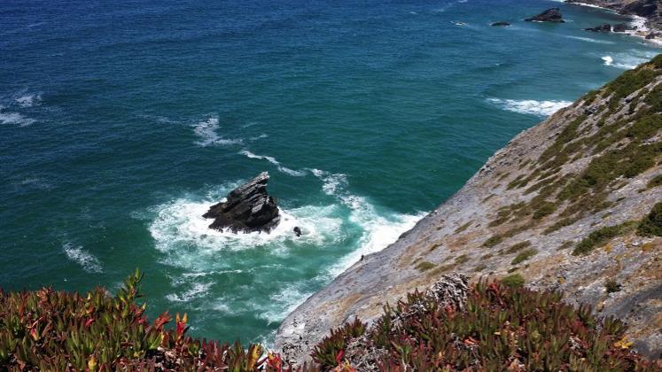 Atlantic Ocean While House Sitting Portugal