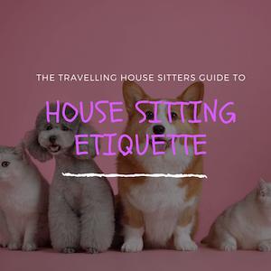 House Sitting etiquette