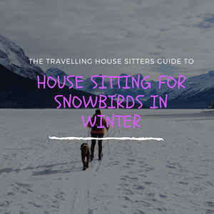 House Sitting for Snowbirds in Winter